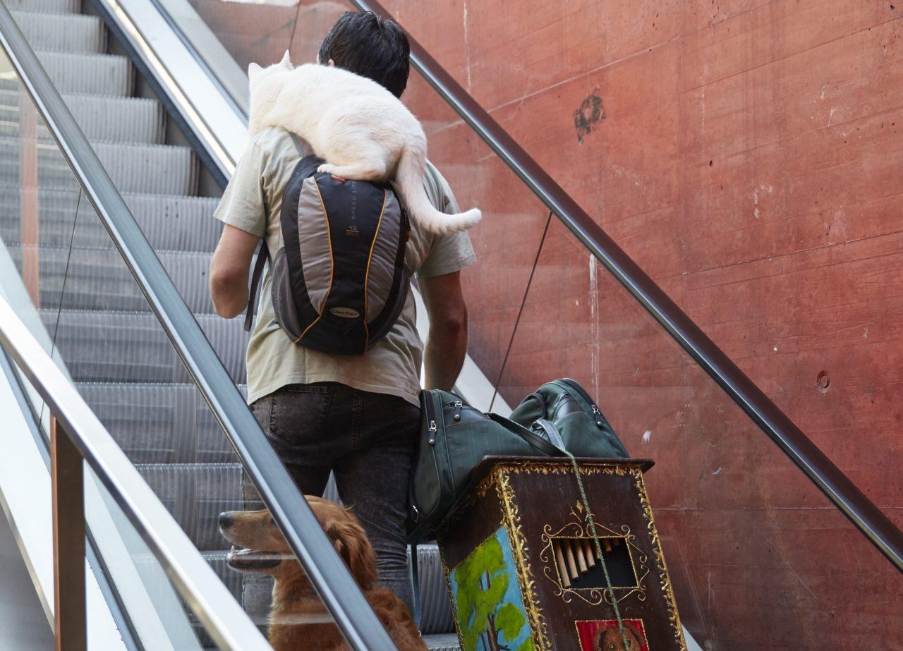 Bern 4.7.2017 Slavcho Slavov mit Hund Lourd und Katze Matz im Bahnhof Bern  © Annette Boutellier